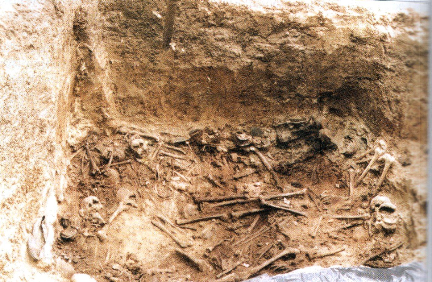 14.-Charków-Piatichatka.-Szkielety-na-dnie-grobu.
