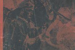 15.-Strona-tytułowa-Jednodniówki-Na-żołnierza-polskiego-Sieradz-1919-r.