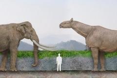 4.-Porównanie-wielkości-człowieka-ze-słoniem-leśnym-i-wczesnym-nosorożcem